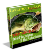 Large Mouth Bass Fishing Secrets